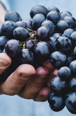 Ma confiture de raisins maison vegan