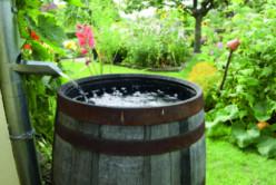 Le tonneau récupérateur d'eau de pluie image