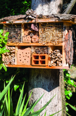 Créer un hôtel à insectes en famille