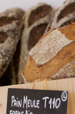 Pourquoi manger son pain complet bio ? image