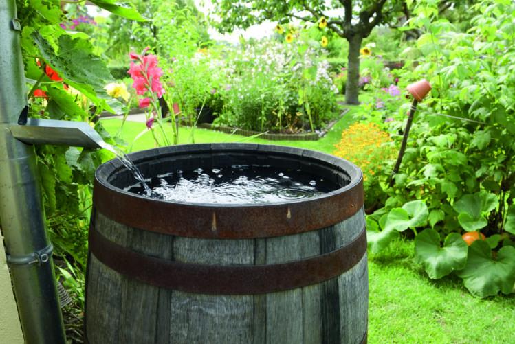 Le tonneau récupérateur d'eau de pluie