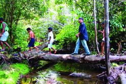 La tribu indienne des sateré mawé et le Warana