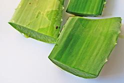 Pourquoi consommer du gel d'aloe vera à boire ?