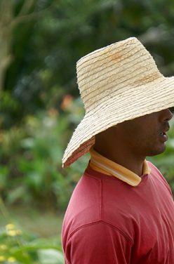 Comment les Cubains ont converti leur île au Bio ?