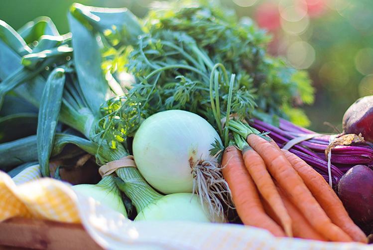 Les légumes primeurs et les fruits du printemps arrivent