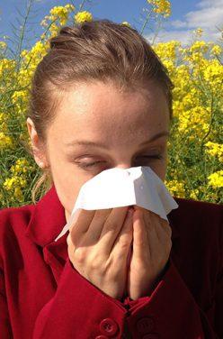 Allergie au pollen : symptômes et remèdes naturels