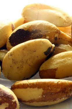 Les 7 propriétés santé de la noix d'Amazonie