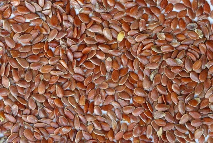 Bienfaits de la graine de lin