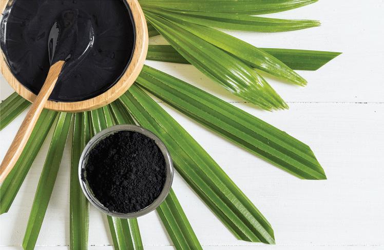 Le charbon végétal votre nouvel allié beauté