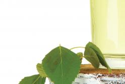 La sève de bouleau pour reminéraliser et réveiller votre organisme